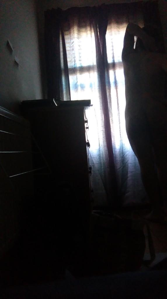 IMAG0262